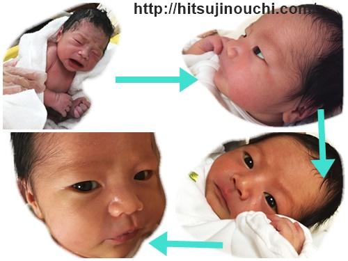 顔つき 新生児